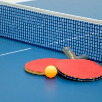 whp-table-tennis